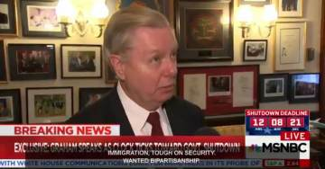 Video: Sen. Lindsey Graham Attacks Republicans Over Budget-DACA Resolution in MSNBC Interview