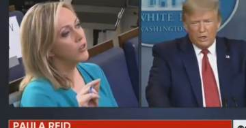 WATCH: Trump Roasts Media to Their Faces During Coronavirus Briefing: 'People in Your Profession Write Fake News, You Do, She Does…'