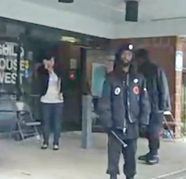 black panthers voting