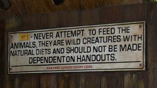 feed animals