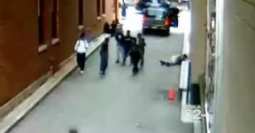 SHOCK VIDEO>>> Woman Brutally Beaten by Black Youth Mob in Brooklyn
