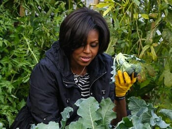 Michelle-Obama-potato