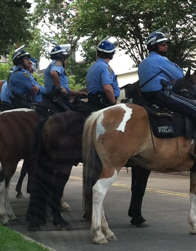 cops houston horses
