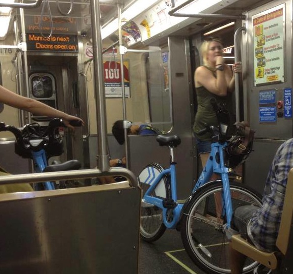 Divvy on the El