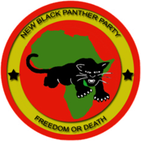 New Black Panther Leader: We Need to Be Willing to Die for Black Nation