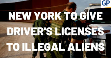 DISGUSTING: New York State Senate Passes Bill Allowing Illegal Aliens To Receive Driver's Licenses (VIDEO)
