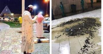 Divine Message? Mecca's 'Grand Mosque' Plagued by Massive Swarm of Locusts (VIDEOS)