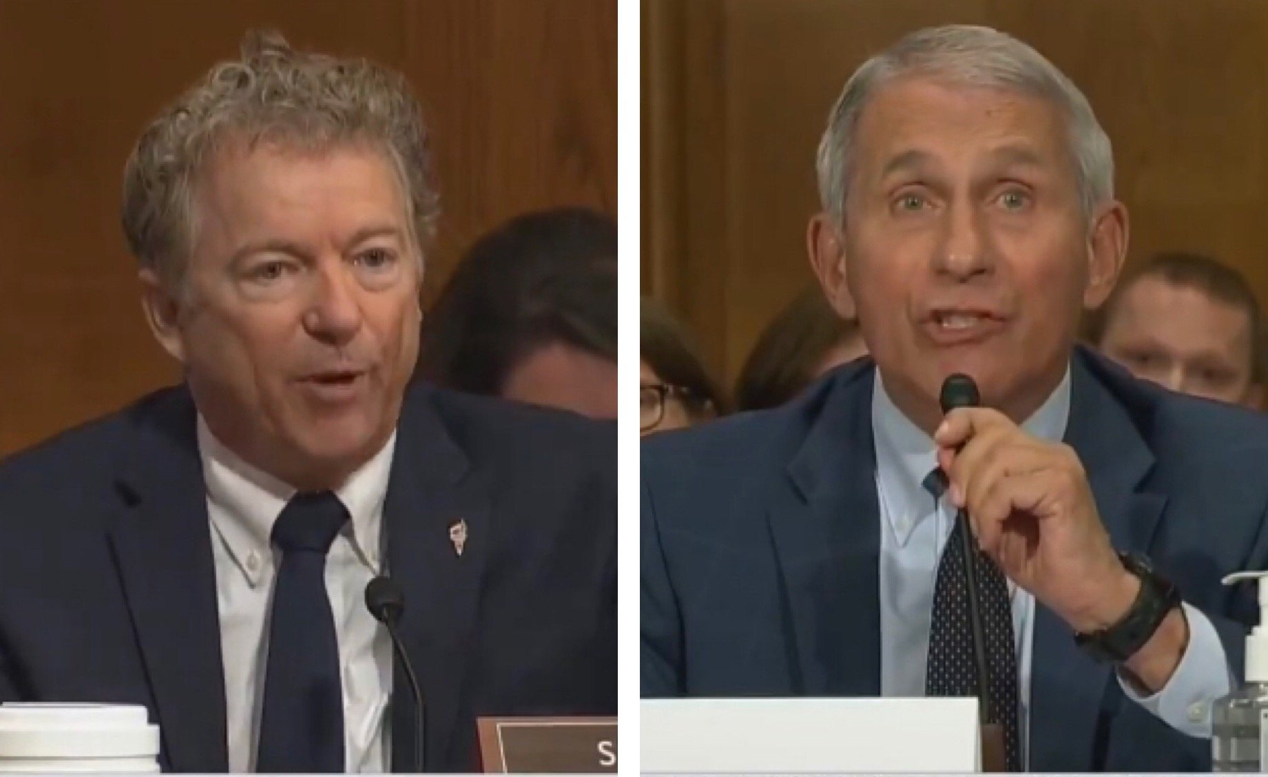 """FIREWORKS! Senator Rand Paul Rips Arrogant Fauci: """"There Will be Responsibility For Those Who Funded the Lab, Including Yourself"""" (VIDEO)"""