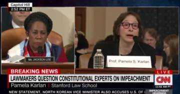 WOW! Angry Democrat Witness Pam Karlan Takes a Cheap Shot at Trump's 13-Year-Old Son Barron (VIDEO)