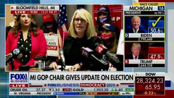 HUGE! Corrupted Software Used in Michigan County that Stole 6,000 Votes from Trump — Is Also Used in ALL SWING STATES — PA, GA, NV, MI, WI, AZ, MN! Laura-Cox-Michigan-GOP-Chairman-Fox-News-Screen-Image-11062020-600x338