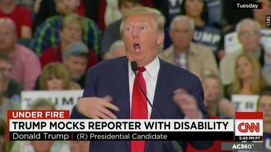 Trump Mocks Disabled Reporter CNN USA Today