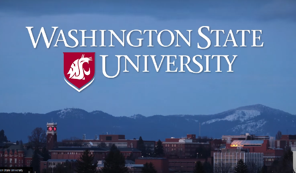 Washington State University is Paying Students $11 per Hour to Promote Social Justice and Diversity