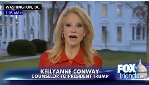 Kellyanne Conway on Berkeley Riots & Democrat Party:  A Bunch of Cry Babies Hysterical About Everything (Video)