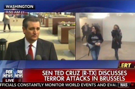 cruz brussels attacks