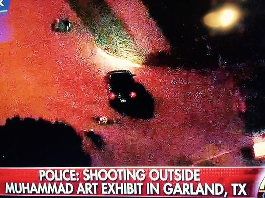 dallas terror attack