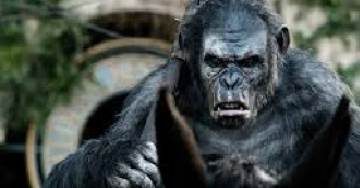 'Hollywood Reporter' Compares POTUS Trump to Evil Ape in New Movie (VIDEO)