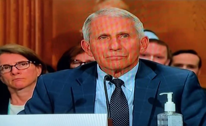 """""""Dr. Fauci as You Are Aware It is a Crime to Lie to Congress, Section 1001 of the US Criminal Code"""" -- Senator Paul Threatens Liar Fauci with Felony for Lying to Congress (VIDEO)"""