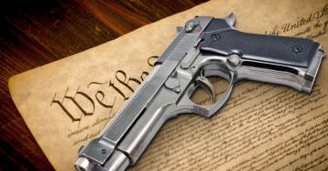 WAYNE ALLYN ROOT: THE GREAT GUN CONTROL DEBATE RAGES