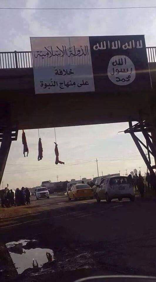 isis bridge hanging