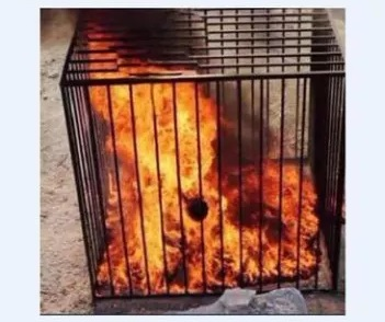 isis cage fire