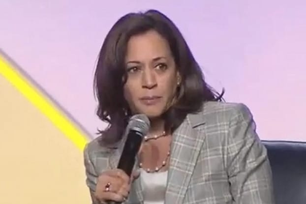Black Lives Matter Bail Fund Promoted By Kamala Harris Bailed Out a Man Who Raped an 8-Year-Old Girl (thegatewaypundit.com)