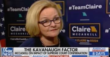 Democrats Turn On Each Other: McCaskill Trashes Warren and Bernie in FOX Interview in Attempt to Look Moderate (VIDEO)