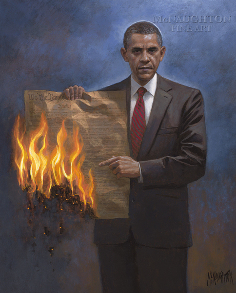 obama constitution mcnaughton