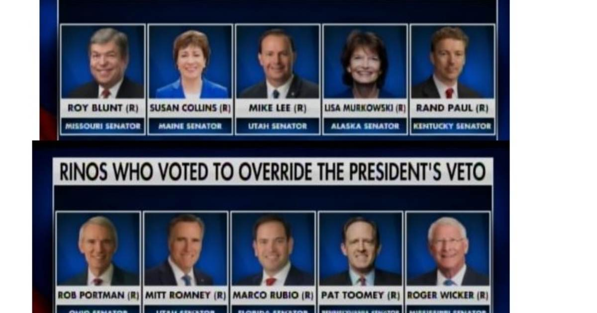 Ten Senate RINOs Vote to End Trump Border Emergency and Prevent Funds to Be Diverted to Trump Border Wall — BUT THEIR VOTE FAILED!