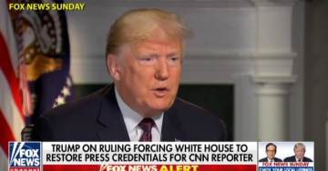 "PRESIDENT TRUMP Responds to Court Ruling on Acosta: ""If He Misbehaves, We'll Throw Him Out"" (VIDEO)"
