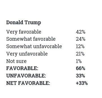 trump favorable 2